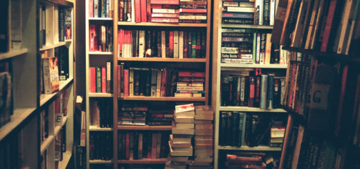 "Miniature Bibliothèque. Crédits : OFTO, sur Flickr, ""Because I was there"""